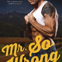 Mr. So Wrong by R.C. Stephens Blog Tour & Review