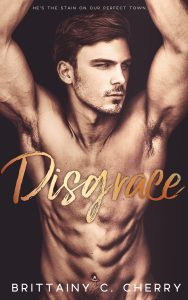 Disgrace by Brittainy C. Cherry Blog Tour & Review