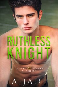 Ruthless Knight by Ashley Jade Review