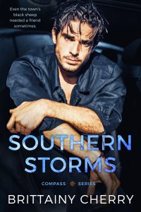 Southern Storms by Brittainy Cherry Blog Tour & Review