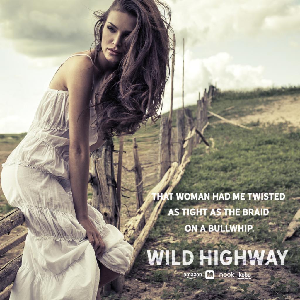 Wild Highway by Devney Perry Teaser 2